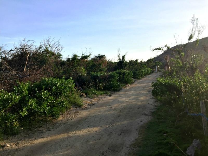Path to Saline beach