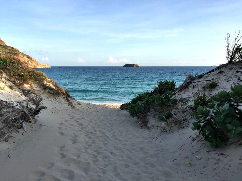 saline beach st barths 2018