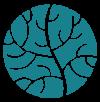 logo saint barth com